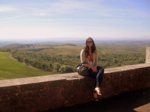 View from Castello Brolio